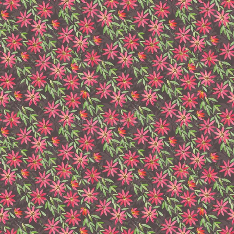 O teste padrão sem emenda com ilustração da aquarela, ocre alaranjado vermelho encaracolado floresce a clematite no fundo azul ve ilustração stock