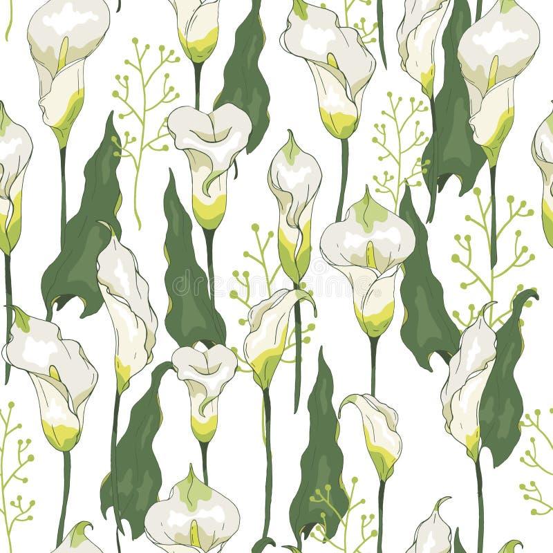 O teste padrão sem emenda com lírios de calla floresce o fundo, teste padrão elegante com flores brancas ilustração do vetor