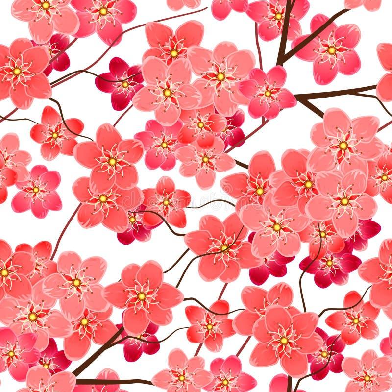 O teste padrão sem emenda com sakura floresce ramos ilustração stock