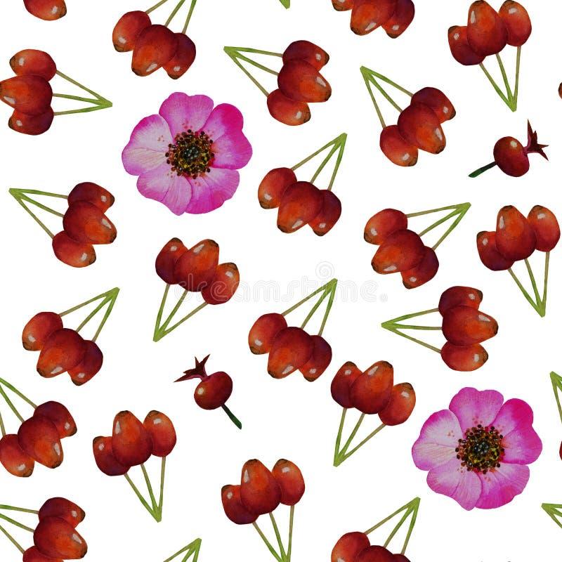 O teste padrão sem emenda com urze, flores cor-de-rosa selvagens, aumentou fruto dos quadris ilustração do vetor
