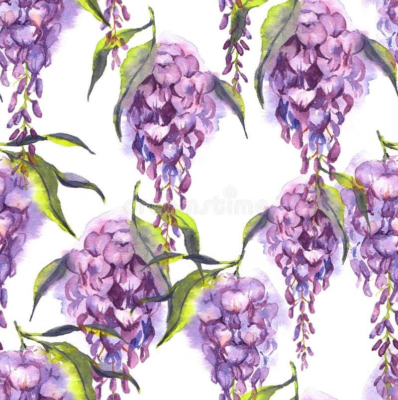 O teste padrão sem emenda da aquarela desenhado à mão com a glicínia macia violeta floresce ilustração do vetor