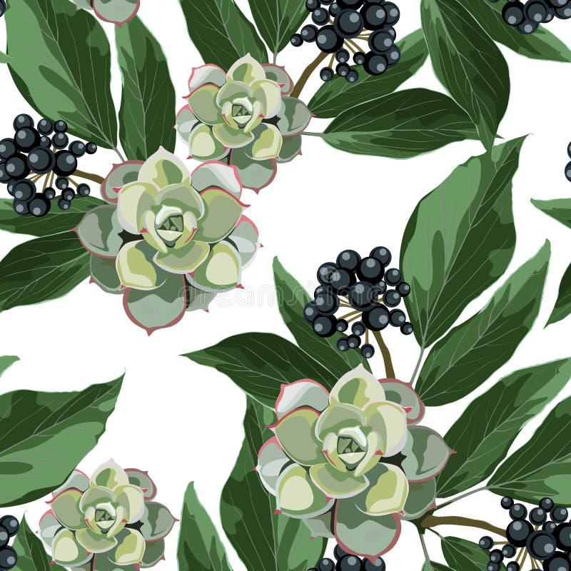 O teste padrão sem emenda do vetor com bagas azuis ramifica com folhas e as flores suculentos exóticas ilustração do vetor