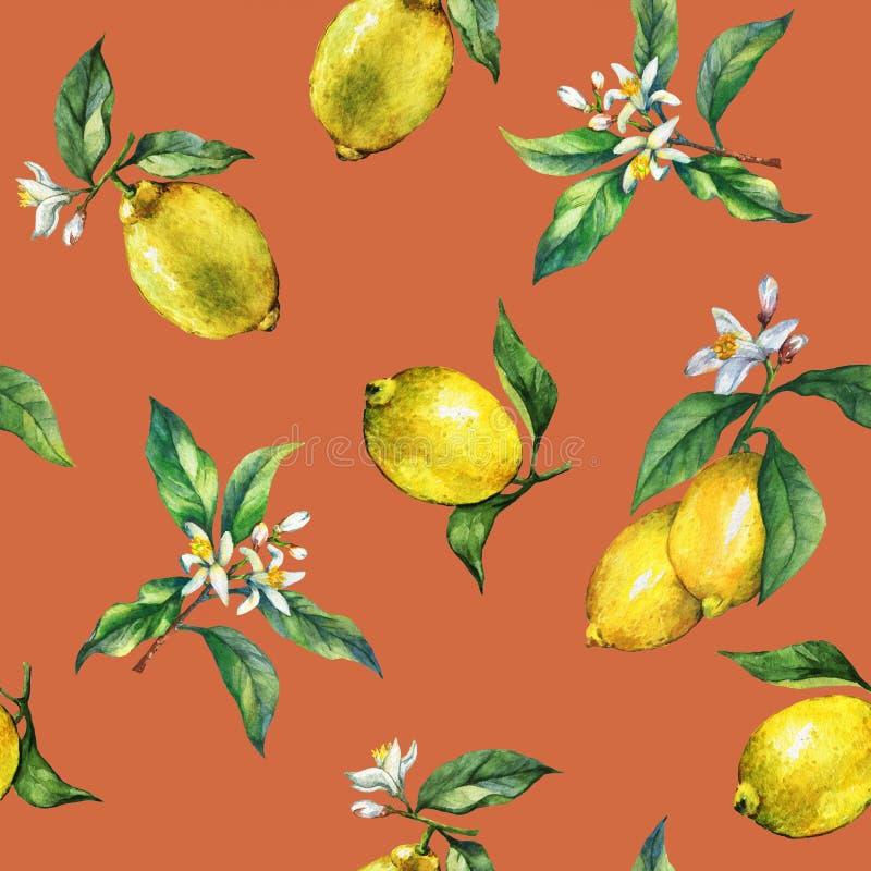 O teste padrão sem emenda dos ramos de limões frescos dos citrinos com folhas e flores do verde ilustração do vetor