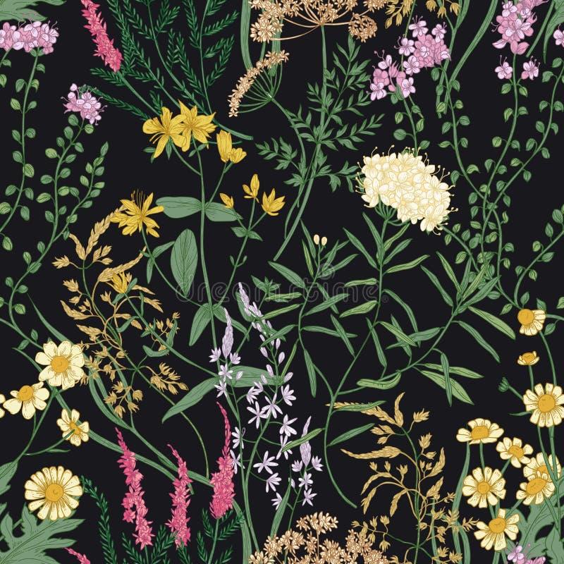 O teste padrão sem emenda floral com florescência selvagem bonita floresce no fundo preto Contexto com florescência do prado ilustração do vetor