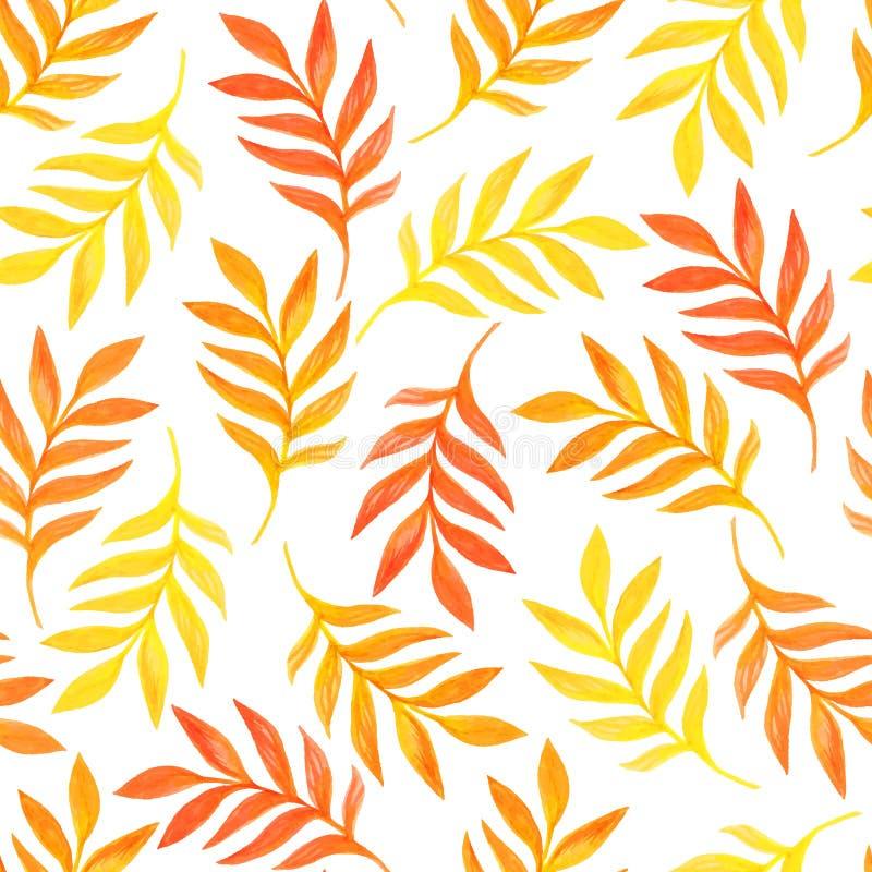 O teste padrão sem emenda floral com laranja sae no fundo branco ilustração royalty free