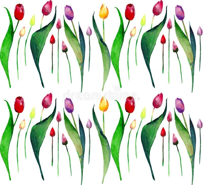 O teste padrão vertical da mola bonita brilhante da alfazema roxa cor-de-rosa amarela vermelha das tulipas floresce a aquarela ilustração royalty free