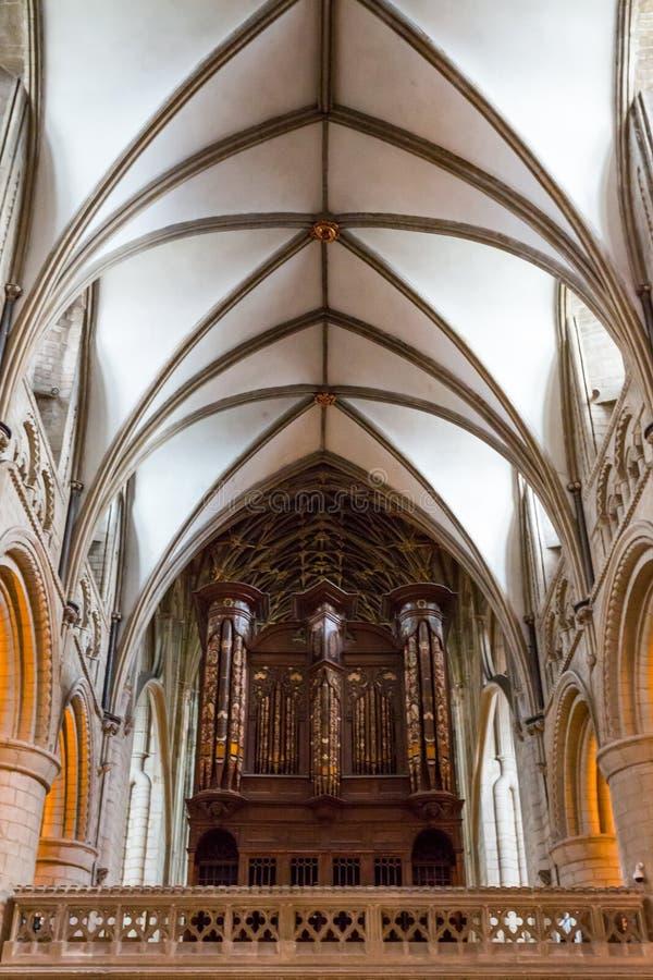 O teto na catedral de Gloucester fotografia de stock royalty free