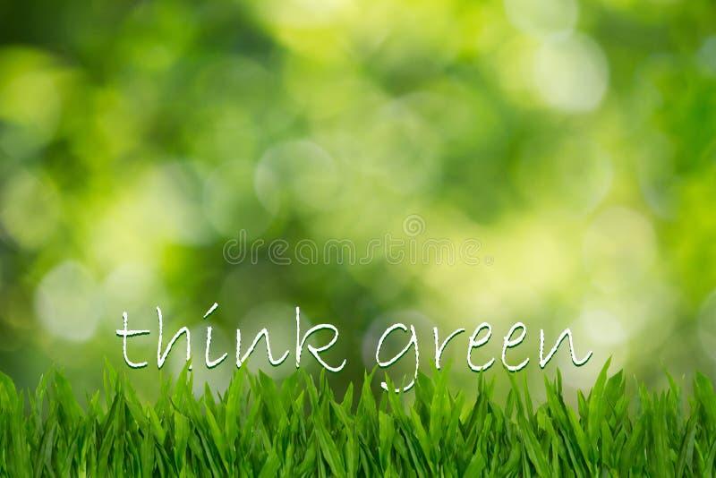 O texto pensa o verde na grama verde no fundo verde borrado do bokeh fotos de stock royalty free