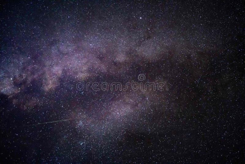 O tiro bonito de protagoniza no céu noturno ilustração do vetor