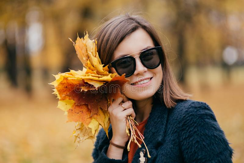 O tiro exterior da jovem mulher moreno bonita veste óculos de sol, leva as folhas amarelas, tem o sorriso encantador, levanta no  imagem de stock