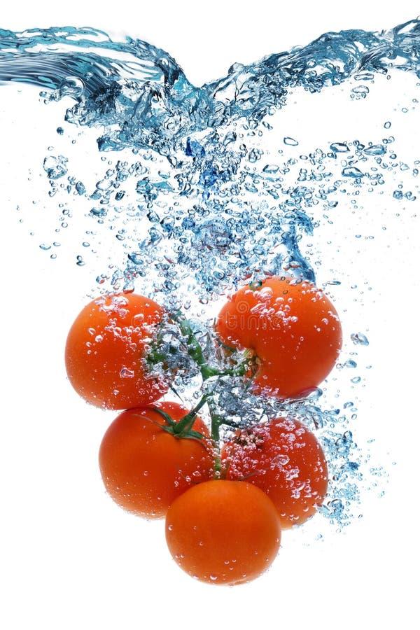 O tomate cai profundamente sob a água imagens de stock