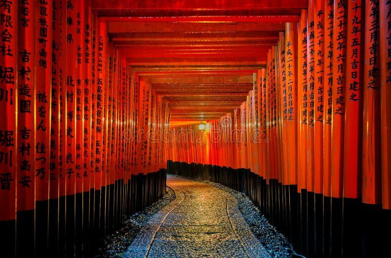 o torii do vermelho bloqueia a passagem no santuário do taisha do inari do fushimi em Kyoto, Japão foto de stock