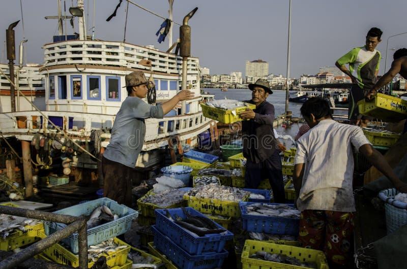 O trabalhador leva a cesta dos peixes para transportar imagem de stock