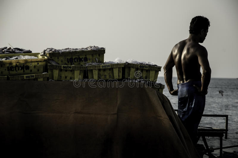 O trabalhador não identificado que espera leva a cesta dos peixes para transportar imagem de stock royalty free