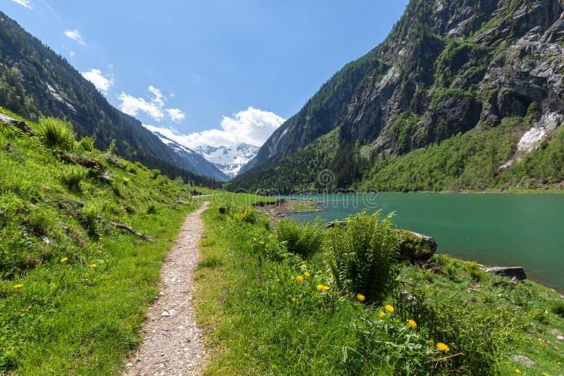O trajeto através das montanhas da mola ajardina perto do lago alpino Stillup, lago Stillup, Áustria fotografia de stock royalty free