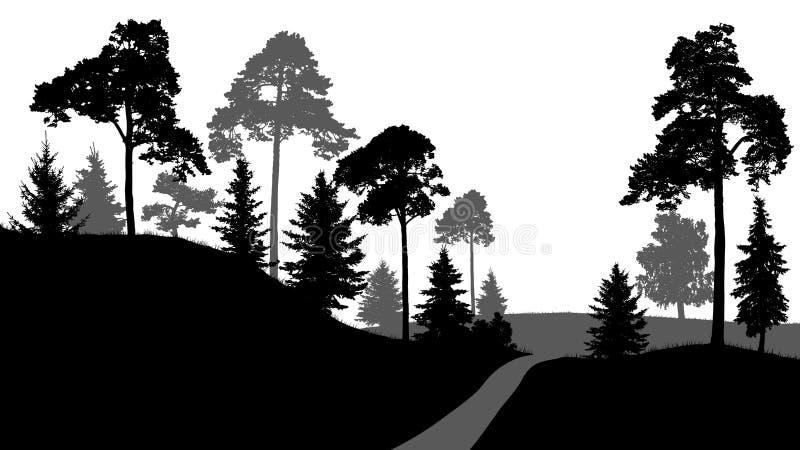 O trajeto de floresta, saída das árvores de floresta mostra em silhueta o vetor, no fundo branco ilustração royalty free
