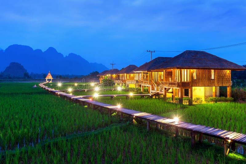 O trajeto de madeira e o arroz verde colocam na noite em Vang Vieng, Laos imagem de stock