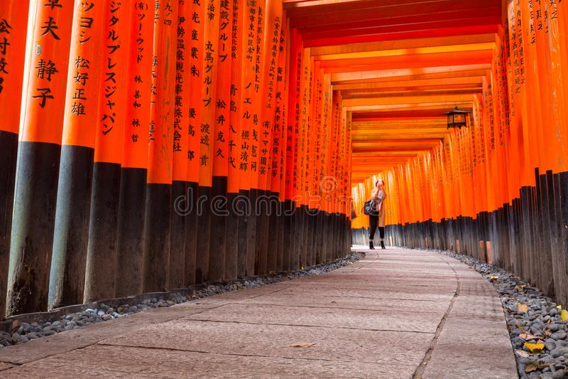 O trajeto de Torii alinhou com milhares de torii no santuário de Fushimi Inari Taisha em Kyoto imagens de stock