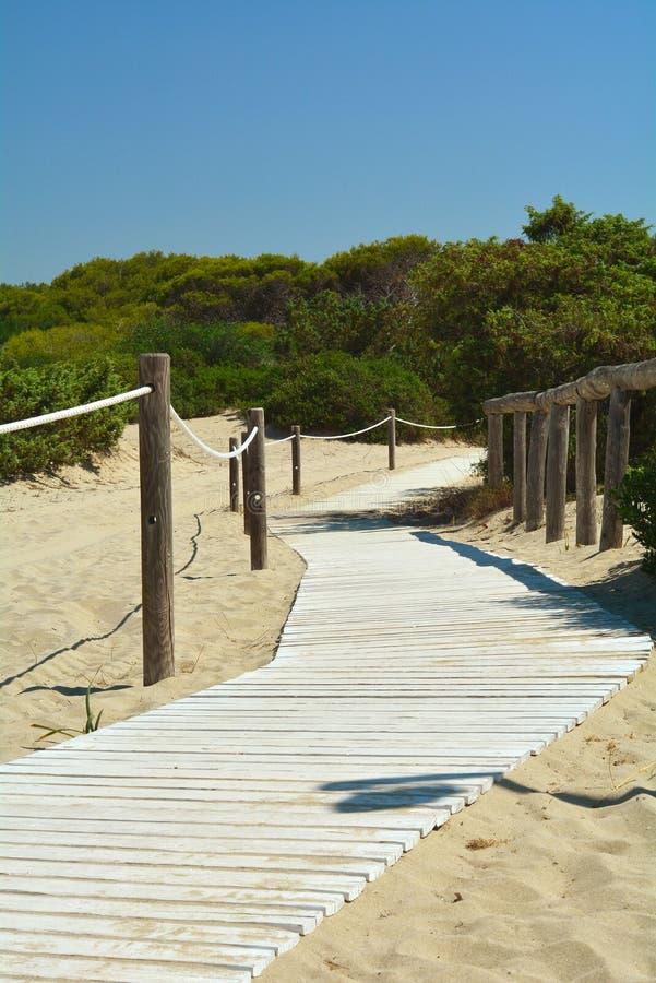 O trajeto na praia imagem de stock royalty free