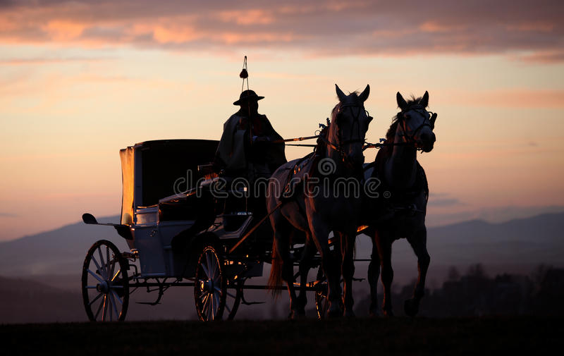 O transporte horsed foto de stock royalty free