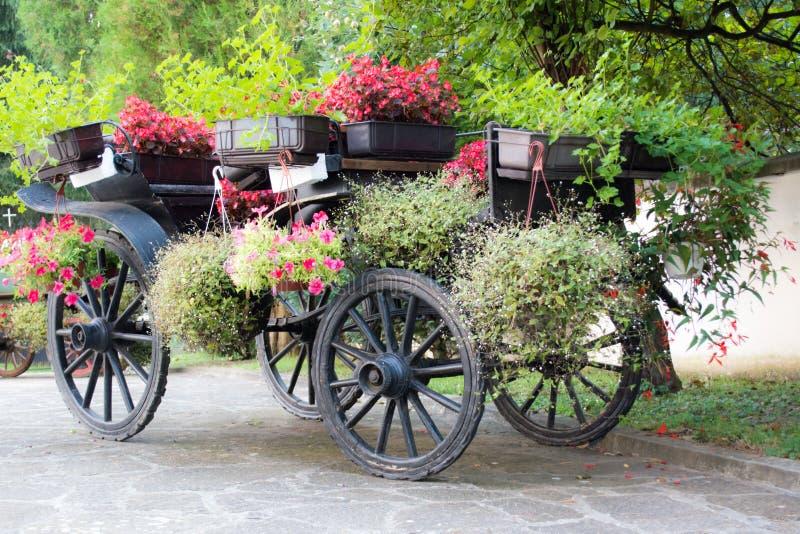 O transporte rural de madeira rústico velho com verão floresce nele imagem de stock royalty free