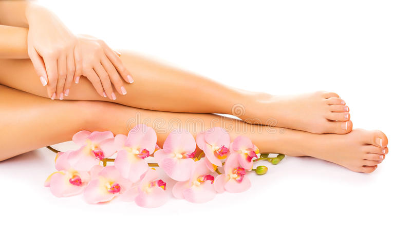 O tratamento de mãos e o pedicure com uma orquídea cor-de-rosa florescem imagens de stock royalty free