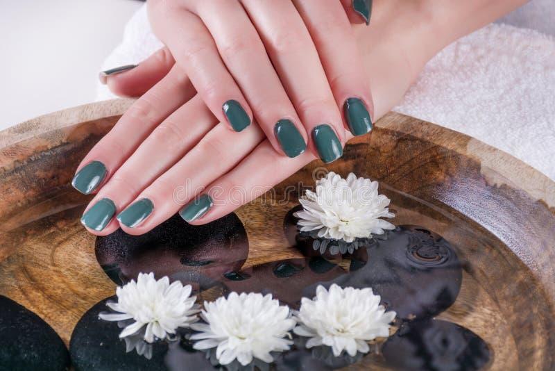 O tratamento de mãos verde-oliva do polimento de pregos do gel da cor na menina entrega à superfície da àgua com flores brancas imagem de stock
