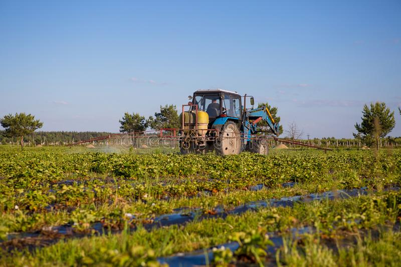 O trator de Agrikultura cultiva o solo no campo fotos de stock royalty free