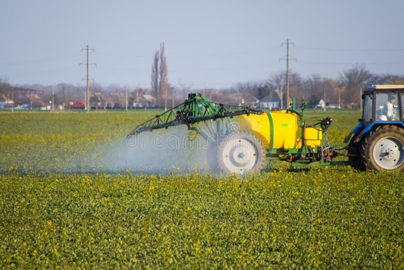 O trator fertiliza um campo do canola, pulverizando o adubo com um trator imagem de stock