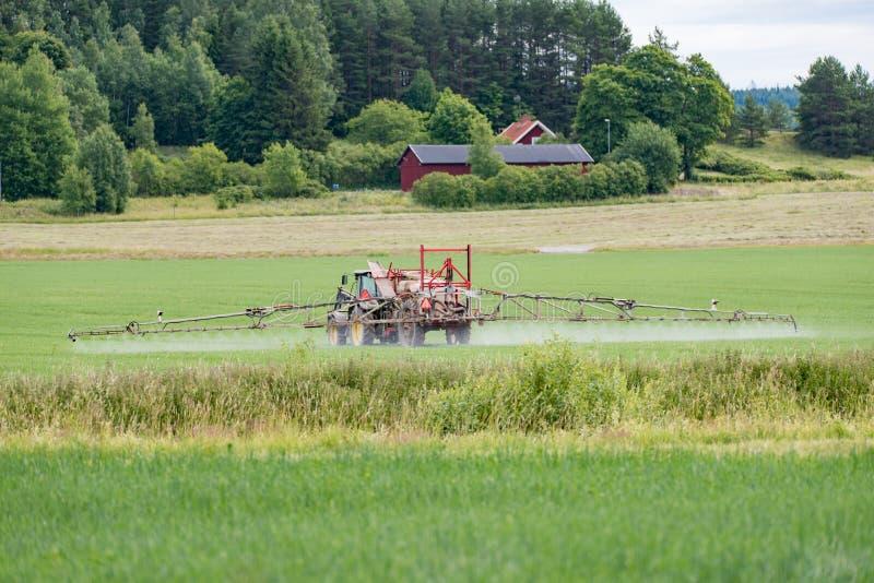 O trator fertiliza um campo verde grande imagem de stock royalty free