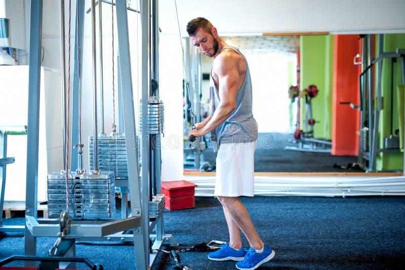 O treinamento atlético do halterofilista no gym, tríceps exercita fotos de stock