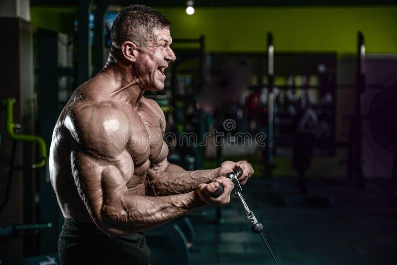 O treinamento modelo considerável do homem novo arma-se no gym imagem de stock royalty free