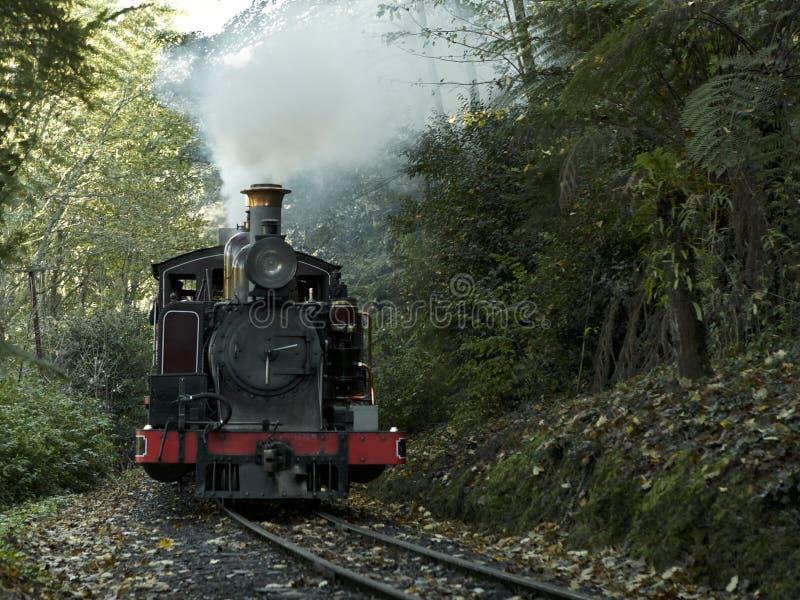 O trem de sopro de Billy monta através das escalas de Dandenong perto de Melbourne, Austrália fotografia de stock royalty free