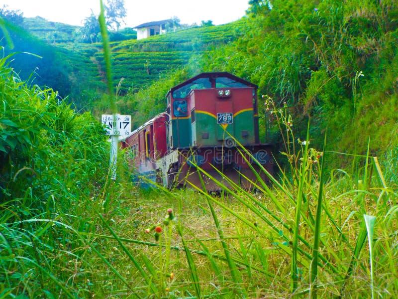 O trem de Udarata Manike foto de stock royalty free