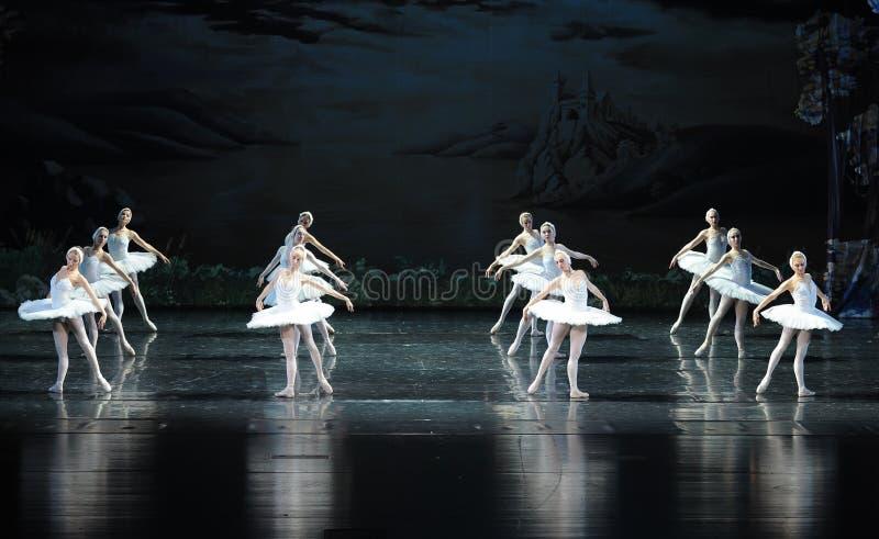 O Tribo-bailado O Lago das Cisnes da cisne imagens de stock