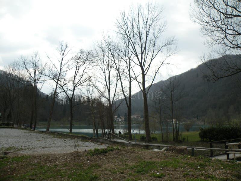 o tributário do ribeiro no lago, natureza intacto fotografia de stock royalty free