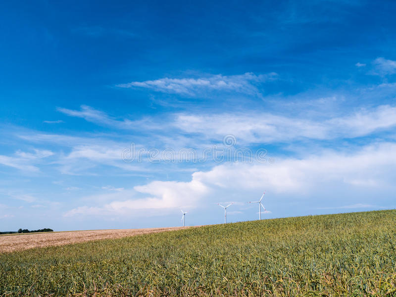 O trigo e o centeio dourados colocam com as turbinas eólicas contra o céu azul fotografia de stock