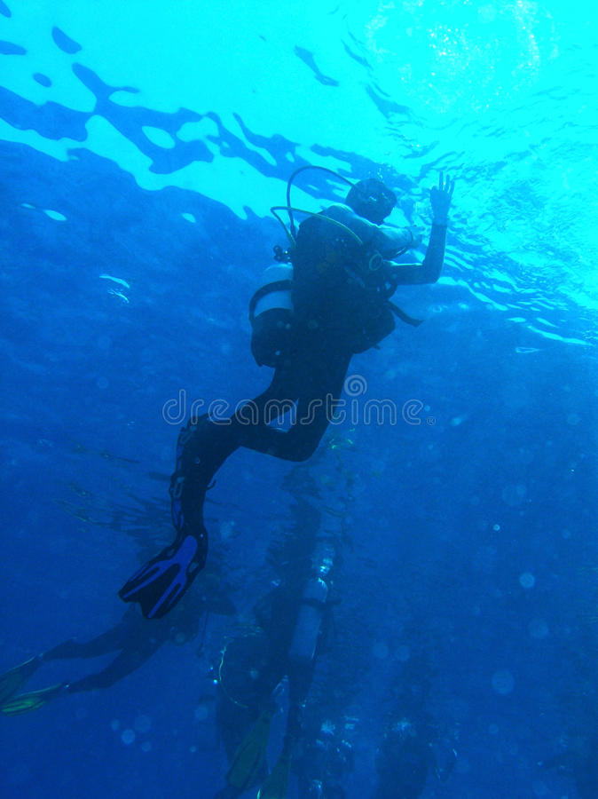 O underwater do mergulhador mostra está bem imagem de stock