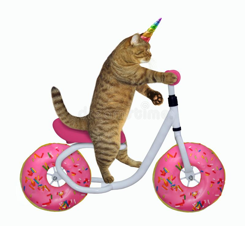O unicórnio do gato monta a bicicleta fotos de stock