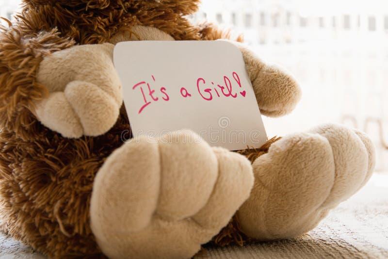 O urso de peluche guarda um cartão do announncement para o bebê, espaço para o texto fotos de stock royalty free