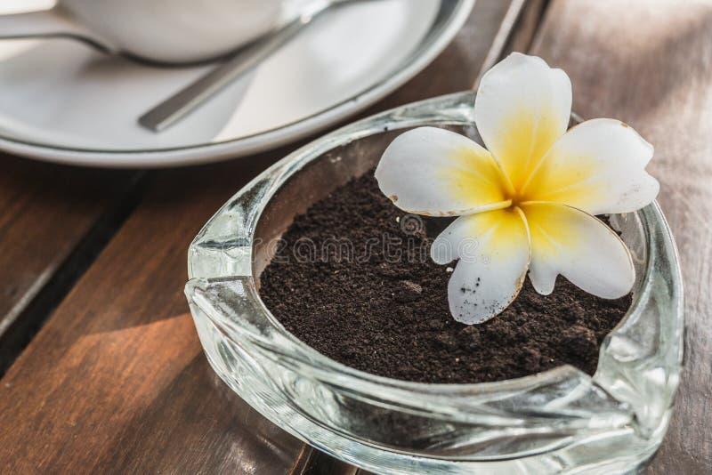 O uso dos resíduos dos feijões de café esmagados reduz o aquecimento global por simples significa imagem de stock royalty free