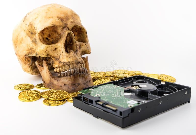 O vírus e Malware estão atacando seus dados imagens de stock royalty free