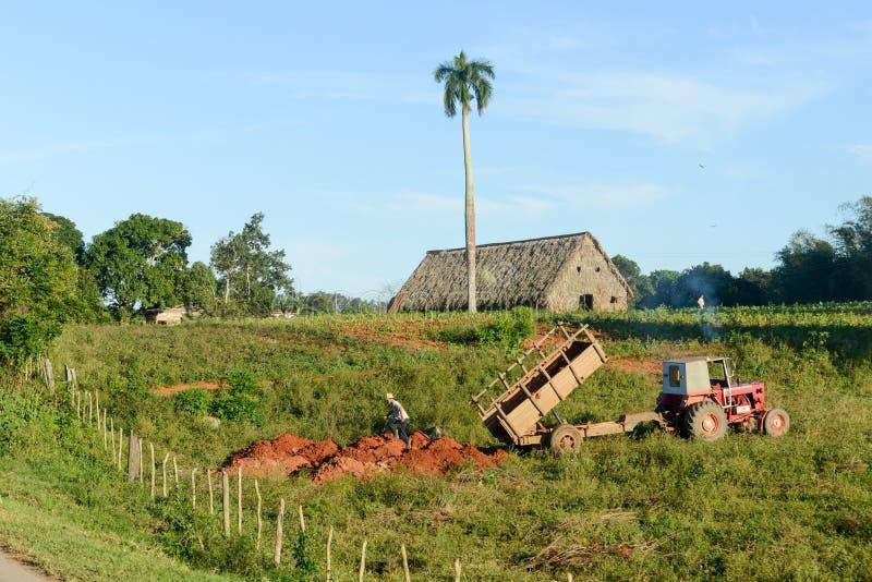O vale de Vinales em Cuba fotografia de stock