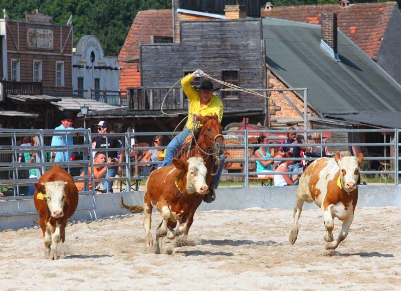 O vaqueiro em uma competição roping da vitela. imagens de stock royalty free
