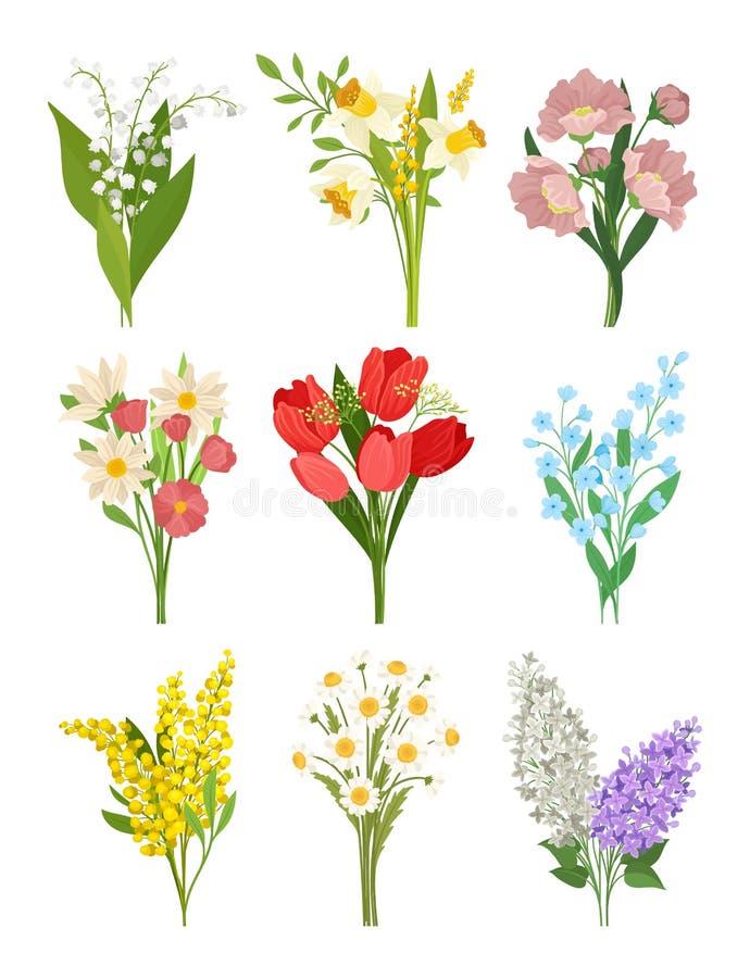 O vectoe liso ajustou-se de ramalhetes bonitos da mola Flores bonitas Tema da natureza e da flora Projeto para o cartão ilustração royalty free