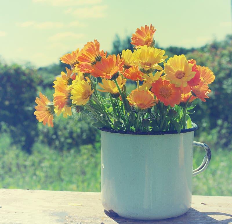 O verão amarelo floresce em uma caneca do branco do ferro Ramalhete de um cravo-de-defunto fotografia de stock royalty free