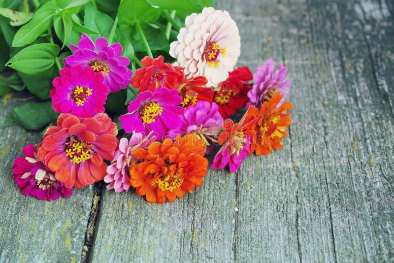 O verão brilhante floresce em uma superfície de madeira velha Fundo do verão com flores fotografia de stock