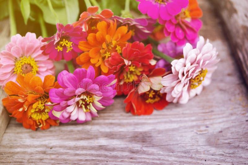 O verão brilhante floresce em uma superfície de madeira velha Fundo do verão com flores fotos de stock royalty free