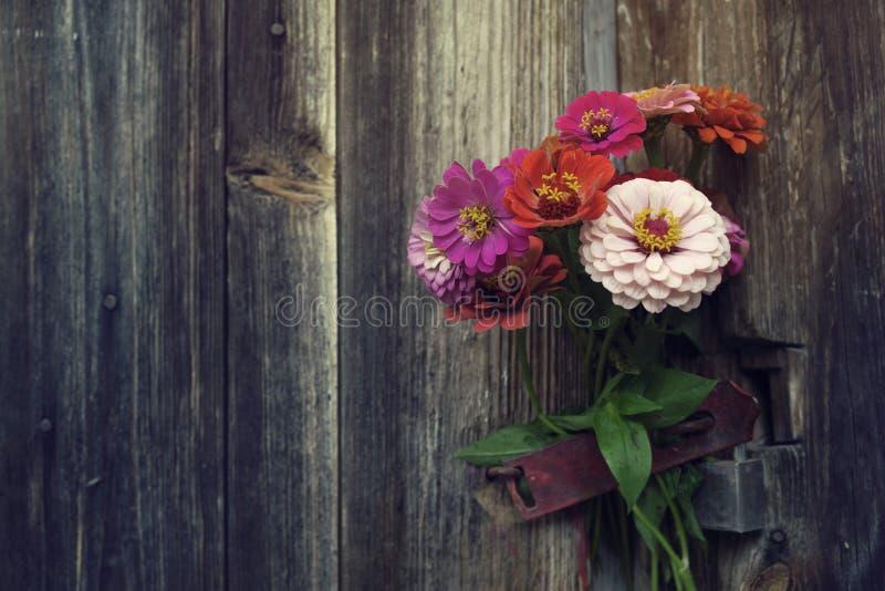 O verão brilhante floresce em uma superfície de madeira velha Fundo do verão com flores fotos de stock