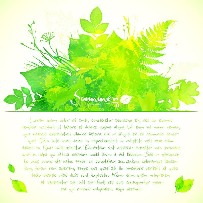 O verão verde da aquarela deixa o cartão ilustração do vetor